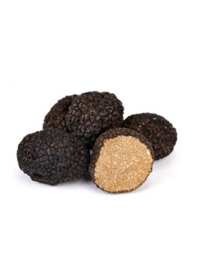 Пресни черни летни трюфели А-качество Пресни трюфели, Видове трюфели, Tuber Aestivum изображение