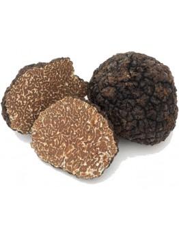 Пресни черни есенни трюфели Uncinatum А-качество