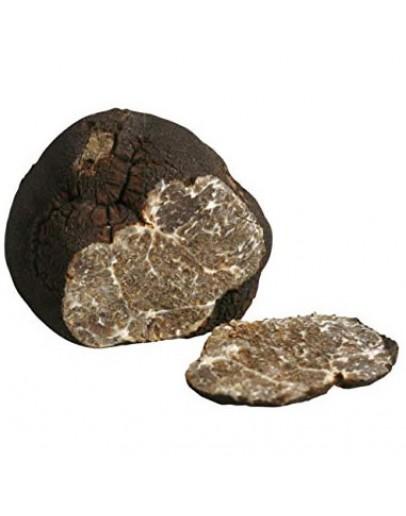 Пресни черни гладки трюфели Macrosporum А-качество Видове трюфели, Tuber Macrosporum изображение